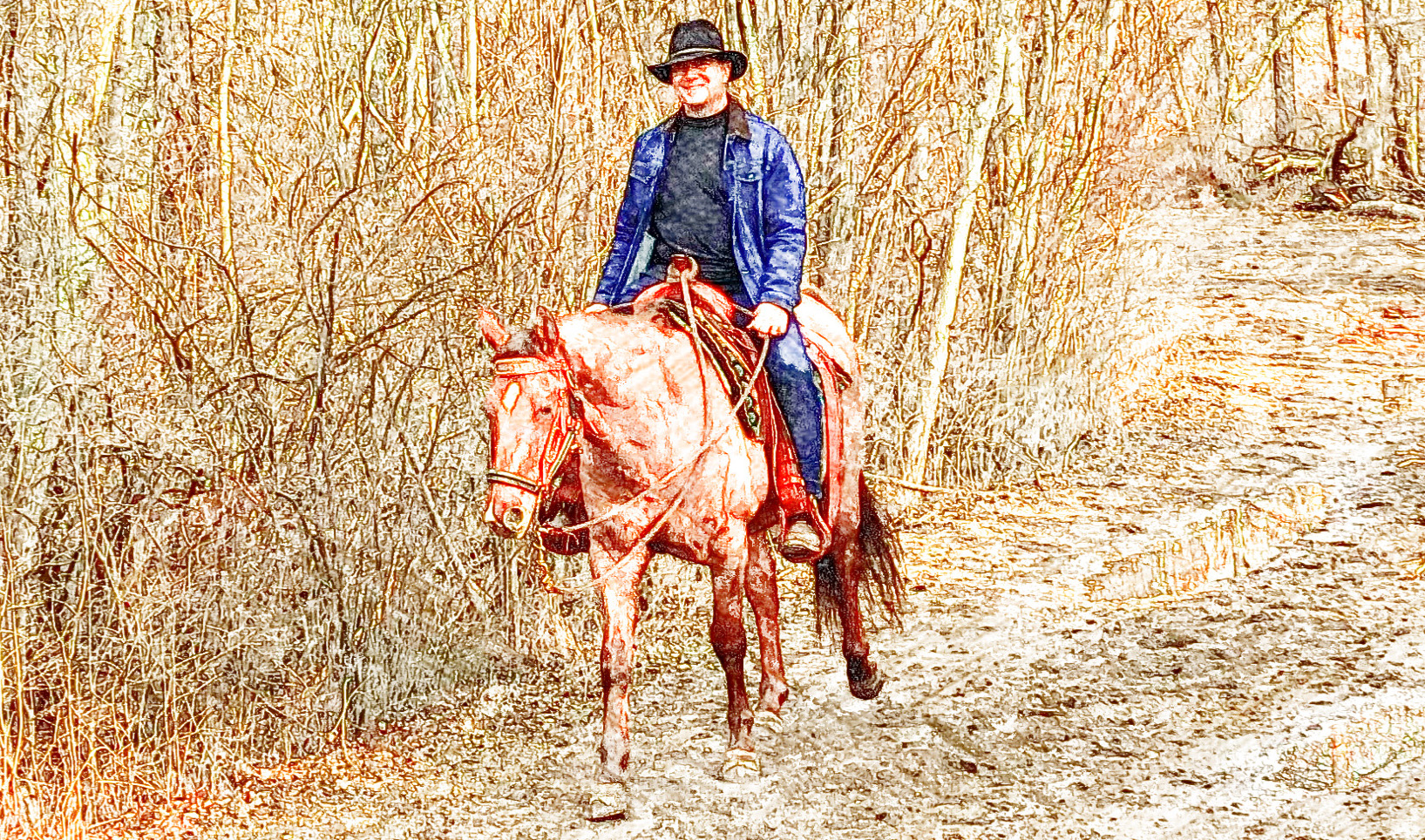Chris riding his horse on a trail
